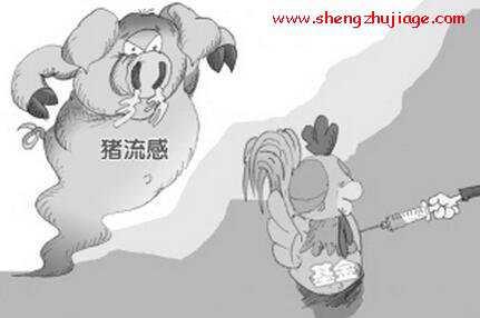 猪流感的流行特点及防控措施