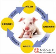 """深度探析我国""""猪周期""""的形成原因!"""