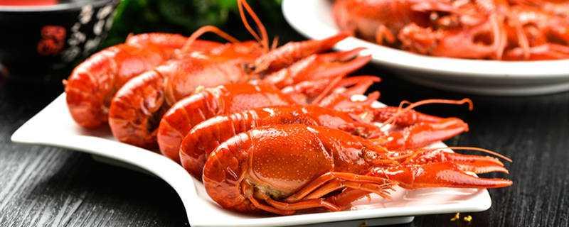 家里养龙虾怎么养