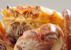 大闸蟹季节是从几月到几月?什么时候吃最好?