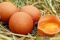鸡蛋价格上涨至6元一斤!上涨原因是什么?2020年鸡蛋价格走势如