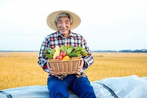 2020年农村创业选什么