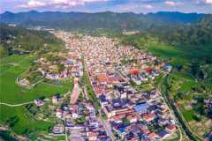 2020乡镇什么市场是空白的?这三个行业需求量最大!