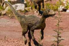 研究称小行星撞击地球是恐龙灭绝主因!具体情况如何?恐龙的种类