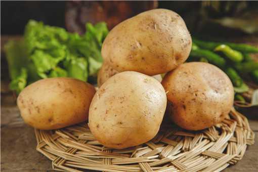 马铃薯的种植方法是什么