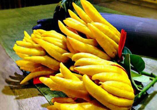 佛手柑怎么吃 佛手柑的常见吃法