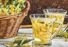 桂花茶的功效与作用,喝桂花茶的好处
