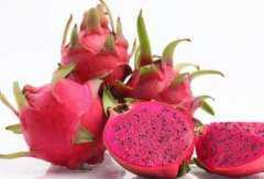 吃火龙果的好处和坏处,吃火龙果有什么好处与禁忌有哪些