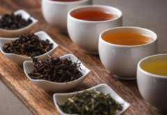 茶叶的种类有哪些