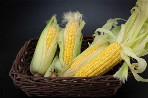 女性每天吃玉米有什么好处