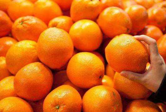 橘子和桔子有什么区别