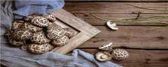 17种常见毒蘑菇