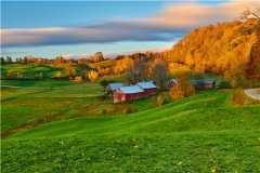 家庭农场补贴找哪个部门?2021家庭农场补贴多少钱?