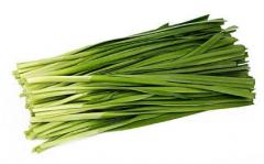日光温室韭菜的栽培技术,韭菜好养吗,怎么养殖比较好