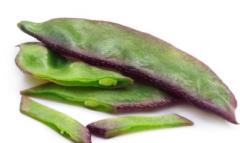 高产扁豆的播种时间,扁豆应该好养吗,怎么养殖