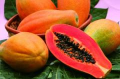 木瓜栽培要注意什么,木瓜养殖需要注意什么