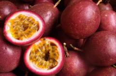 百香果引种前注意事项,百香果怎么种植比较好