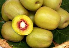 猕猴桃夏季修剪常见误区,猕猴桃修剪需要注意什么