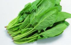 高产菠菜的田间管理要点,菠菜怎么种植