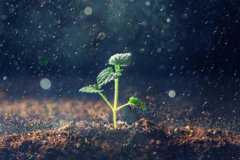 土地日是每年几月几日?2021年是第几个全国土地日?