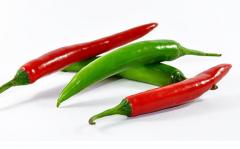 辣椒盖地膜有哪些好处,什么时候播种比较好
