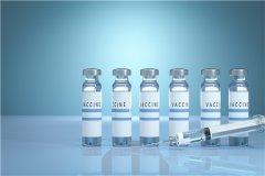 安徽智飞疫苗怎么停了?为什么打科兴不打智飞新冠疫苗?
