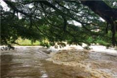 河南暴雨致农村多人失联!农村暴雨注意事项具体有哪些?