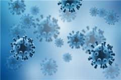 德尔塔病毒和新冠病毒有什么区别?具体有这5大区别!