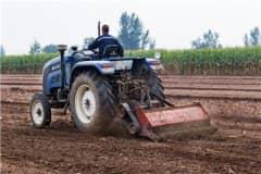 耕地地力保护补贴是什么意思?2021耕地地力保护补贴标准是多少?附