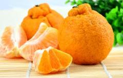 丑橘盆栽如何养护,关键方法有哪些