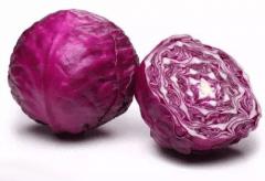 怎样种好紫甘蓝,需要什么样的生长条件