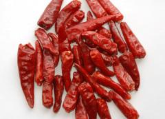 辣椒苗的培育方法,辣椒种植方法技巧总结