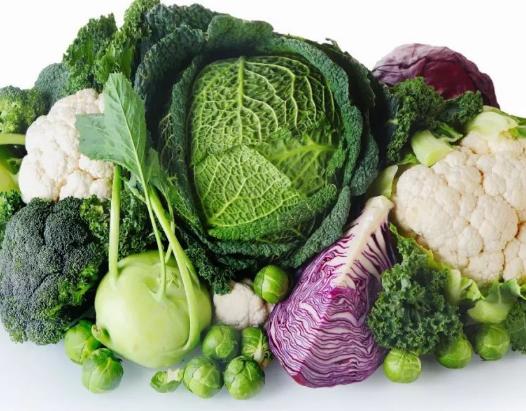 蔬菜如何越冬成问题 雨雪过后如何补救