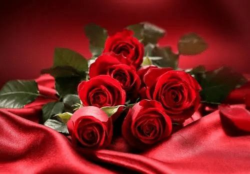女朋友生日送什么花比较好浪漫