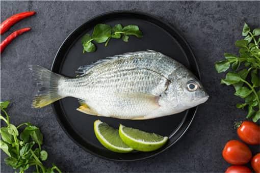 常见的养鱼方式有哪些