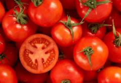 冬春茬番茄落花落果是什么原因,怎么防治好