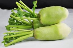 萝卜无公害施肥技巧,萝卜怎么高产施肥好